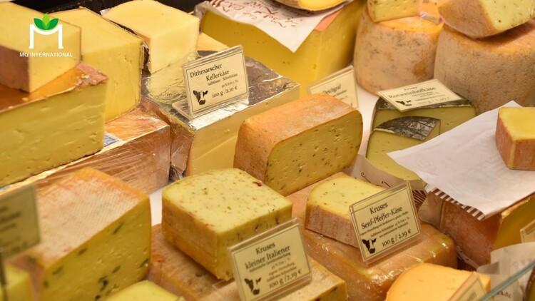 Bên cạnh sữa dạng lỏng, các sản phẩm từ sữa như sữa chua và phô mai cũng mang lại nhiều giá trị dinh dưỡng cho người sử dụng